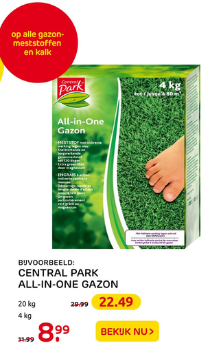 CENTRAL PARK ALL-IN-ONE GAZON