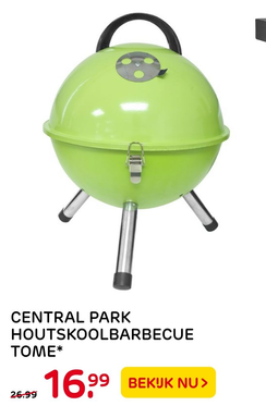 Central park houtskoolbarbecue tome