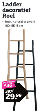 Ladder decoratief Roel